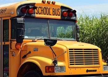 School bus 4406479 1920